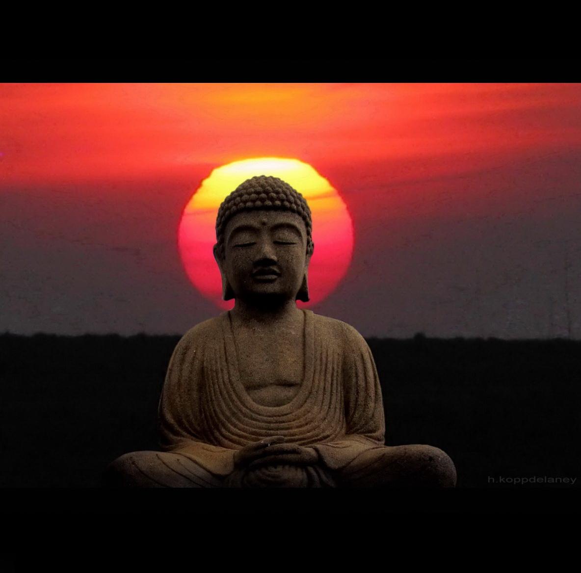 ® flickr / h.koppdelaney - Budda untergehende Sonne