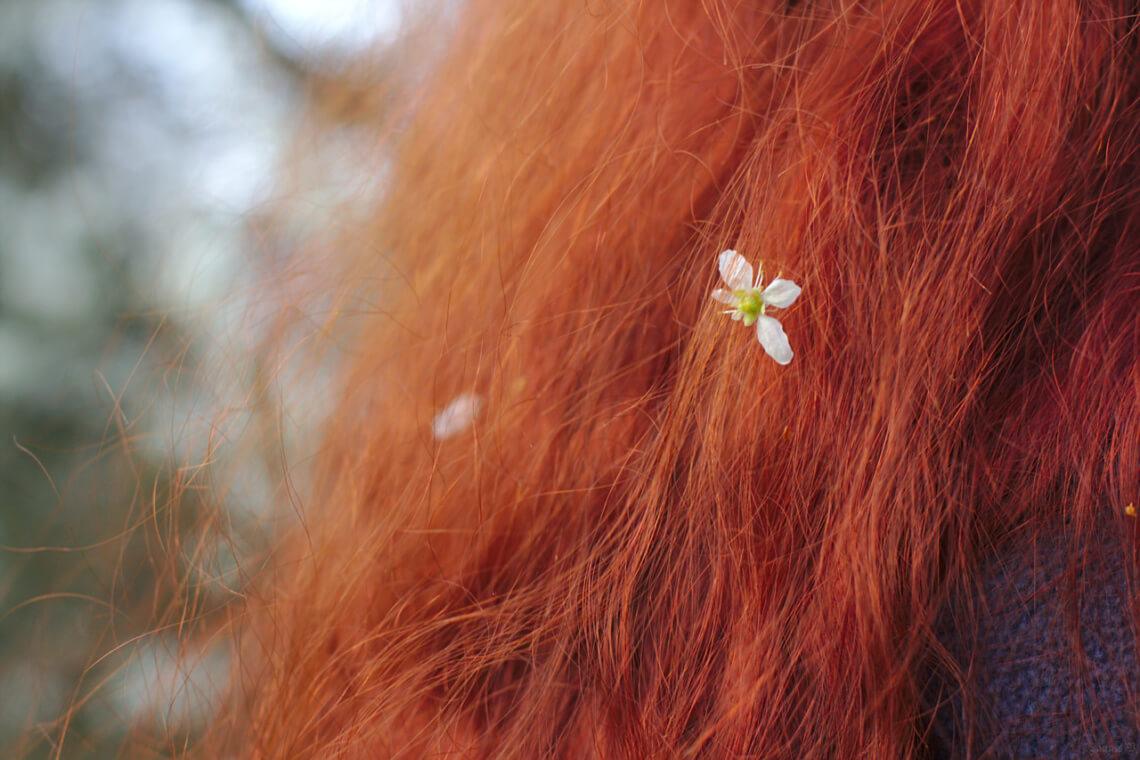 © flickr.com / Jannis