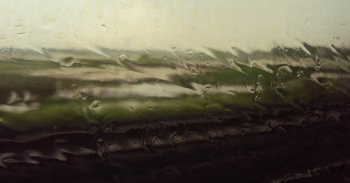 Rain water against the window
